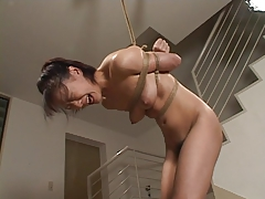 Japanese Bdsm Spanking Group Sex